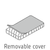 Removable cover.png